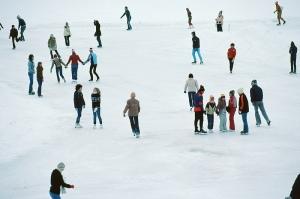 Oakville Ice Skating