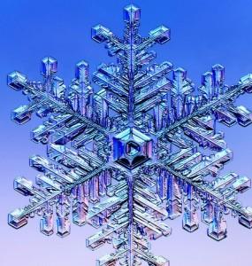 Oakville Winter 2011-2012