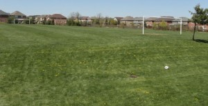 Soccer Fields around Oakville Ontario used by OSC