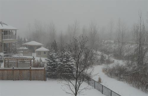 Bronte Creek Snow 2013