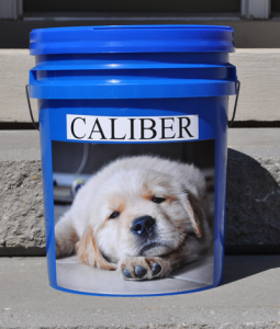 personalized pet products food container