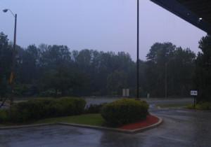 rainoak