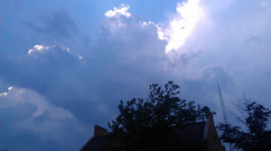 storm2oak