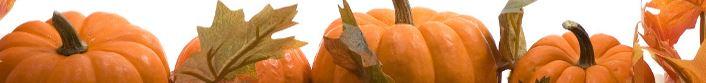 October in Oakville